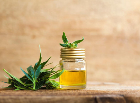 Is CBD Oil Good for Pain Management?