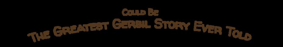 jet the gerbil book