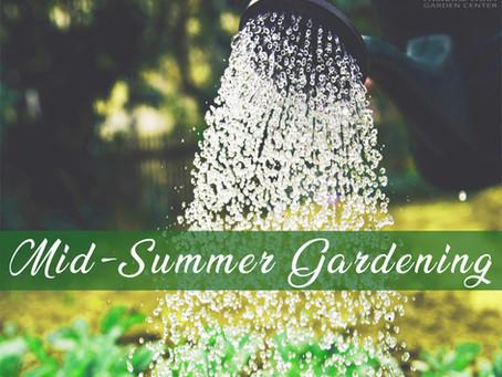 Mid-Summer Gardening: July Maintenance Tips