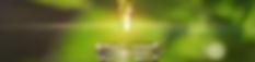 cbd_oil_greenly_organic