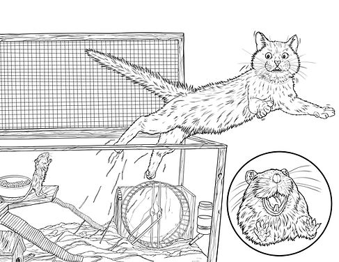 gerbil scares cat