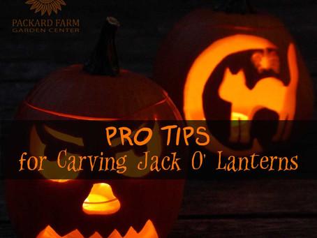 8 Pro Tips for Carving A Killer Jack O' Lantern