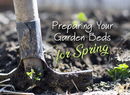 How to Prepare Your Garden Beds for Spring