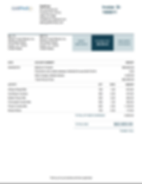 sample_invoice_before