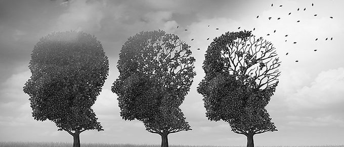 dementiaprimary.jpg
