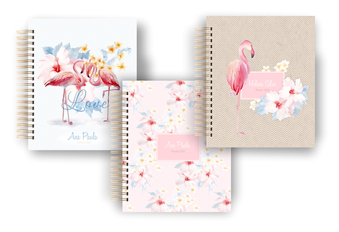 COMBO Capas extras BIG Planner Flamingos