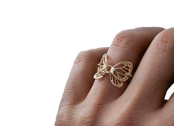 Anillo Mariposa Mediano Oro