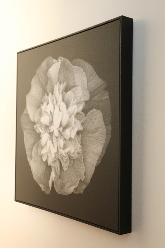 manly modern industrial - black white floral artwork on canvas