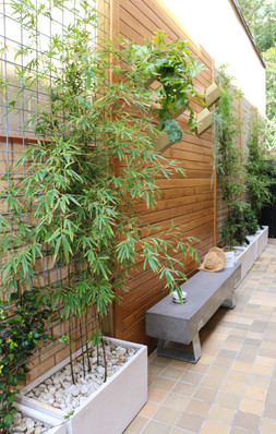 courtyard - timber feature wall with brass planters and concrete bench