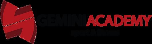 logo gemini academy.png