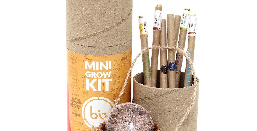 Mini grow kit (colouring pens)