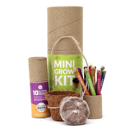 Eco Friendly Plantable Mini Grow Kit Set | Kids Special