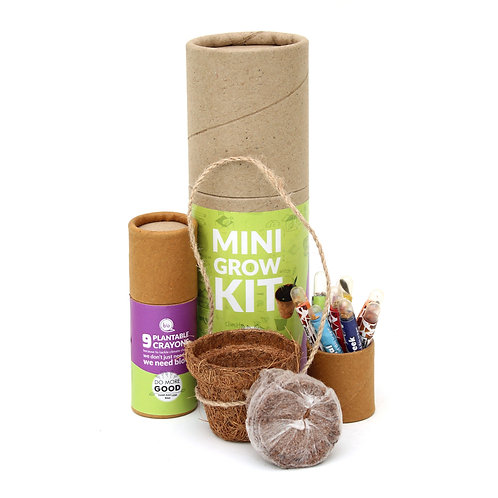 Eco Friendly Plantable Mini Grow Kit Set | Kids Special
