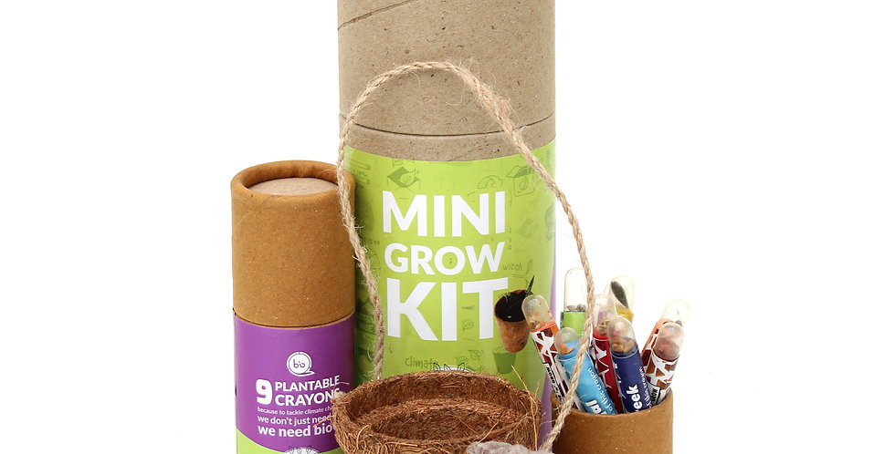 Mini grow kit - for kids