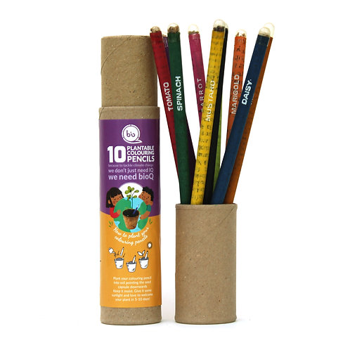 Plantable Recycled Paper Colouring Pencils - Set of 10 (Full Size)