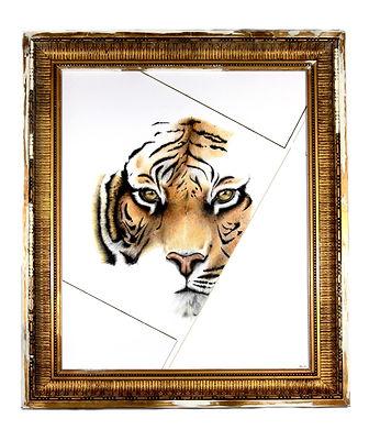 tigre_modifié_modifié.jpg