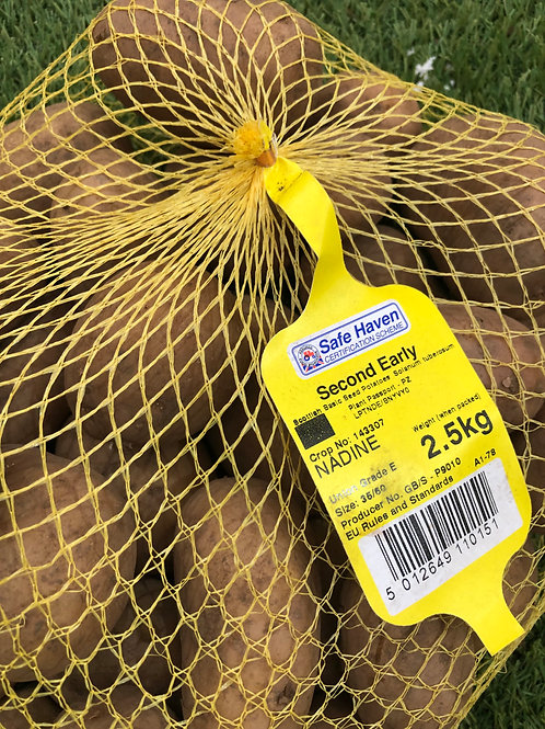 Nadine Seed Potato 2.5kg