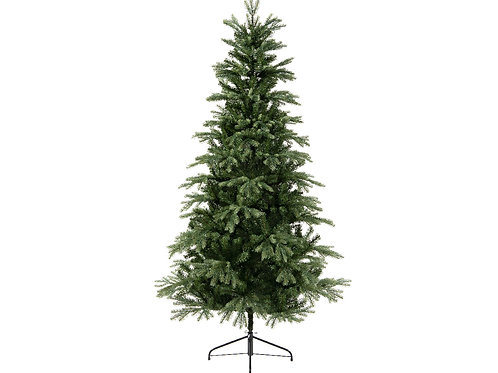 6ft Sunndal Fir