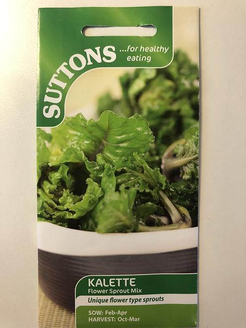 Kalette 'Flower Sprout Mix'