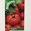 Thumbnail: Tomato 'Marmande'