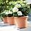 Thumbnail: Green basics cylinder mild terra 35cm