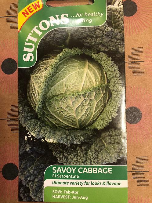 Savoy Cabbage F1 Serpentine