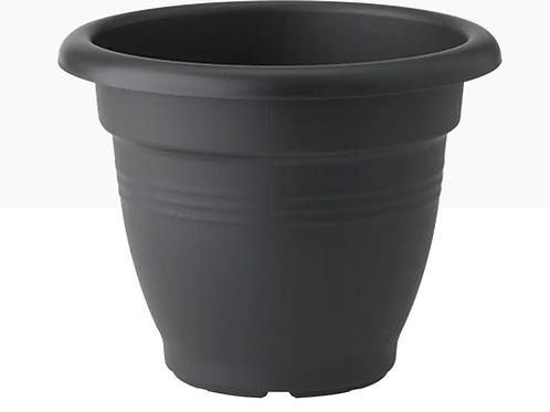 Green basics campana living black 30cm