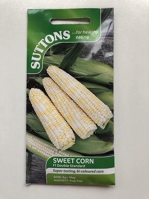 Sweet Corn 'F1 Double Standard'