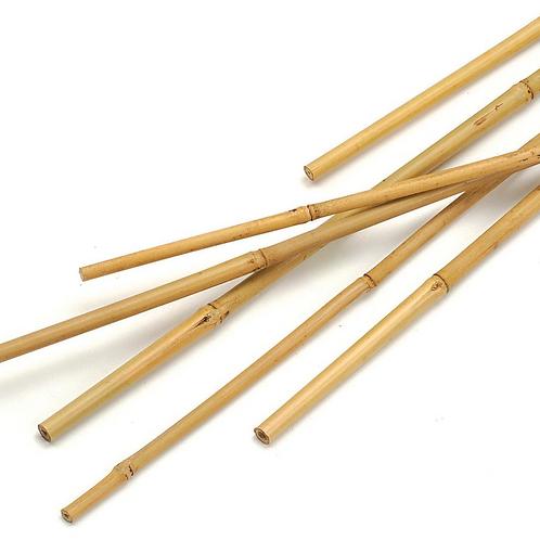 Bamboo Canes Individual