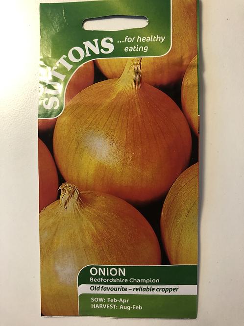 Onion 'Bedfordshire Champion'