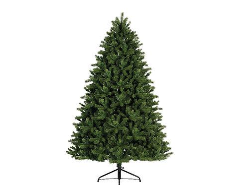 7ft Freiburg Pine
