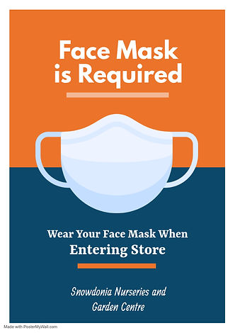 Copy of Face Mask Required Flyer - Made
