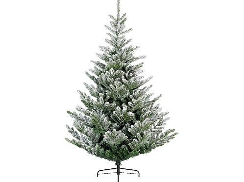 8ft Snowy Liberty Spruce