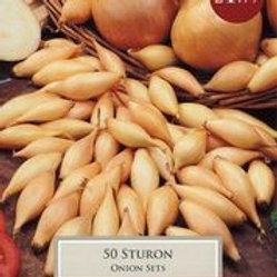 Sturon Onion Sets