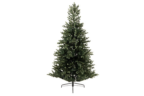 6ft Geneva Fir