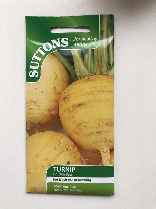 Turnip 'Golden Ball'