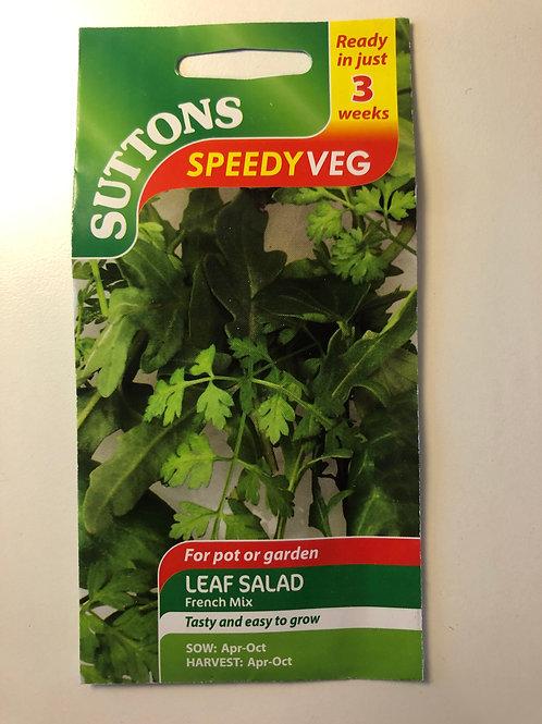 Leaf Salad 'French Mix'