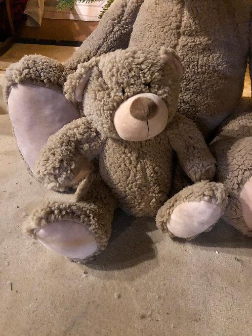Medium Teddy Bear