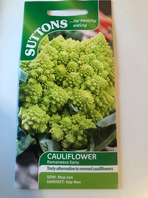 Cauliflower 'Romanesco'