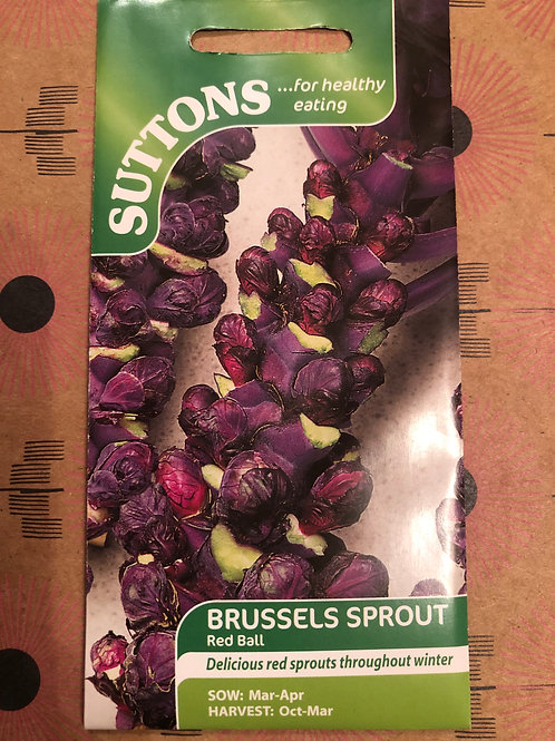 Brussels Sprout Red Ball