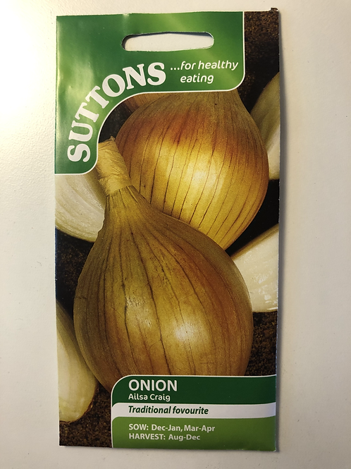 Onion 'Ailsa Craig'