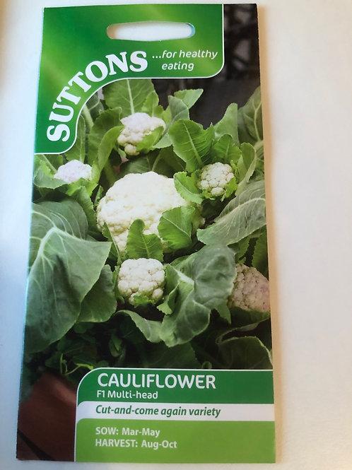 Cauliflower F1 Multi-head