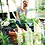 Thumbnail: Green basics campana mild terra 50cm
