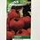 Thumbnail: Tomato 'Moneymaker'
