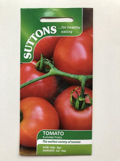 Tomato 'Summer Frolic'