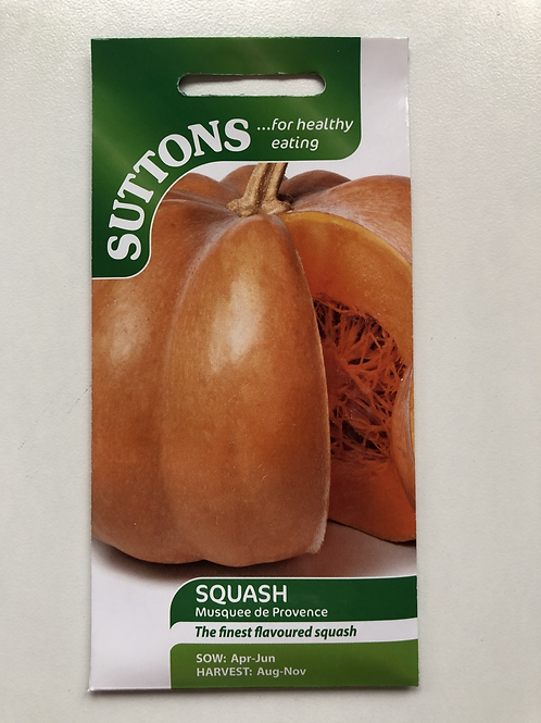 Squash 'Musquee de Provence'