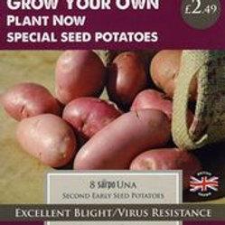 Sarpo Una Seed Potato