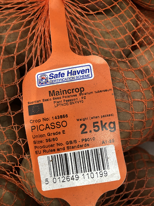 Picasso Seed Potato 2.5kg