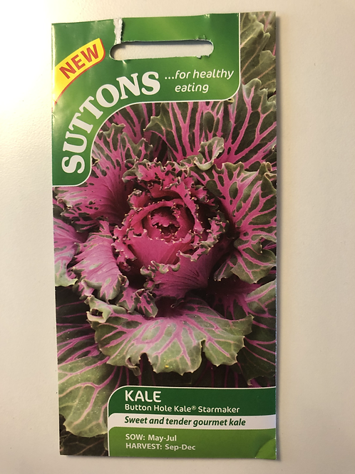 Kale Button Hole 'Starmaker'