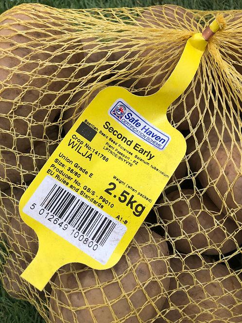 Wilja Seed Potato 2.5kg